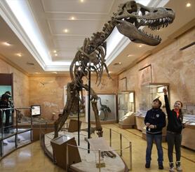 Музей естествознания в Казани: как добраться, стоимость билетов и режим работы